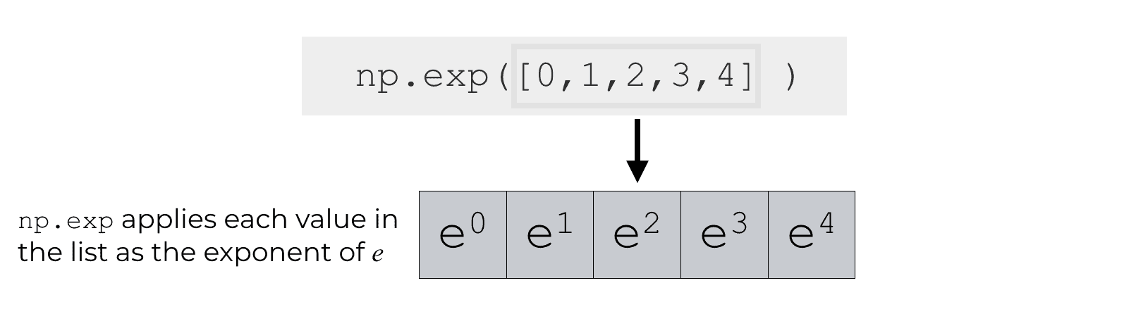 An explanation of how numpy.exp operates on a 1-d array.