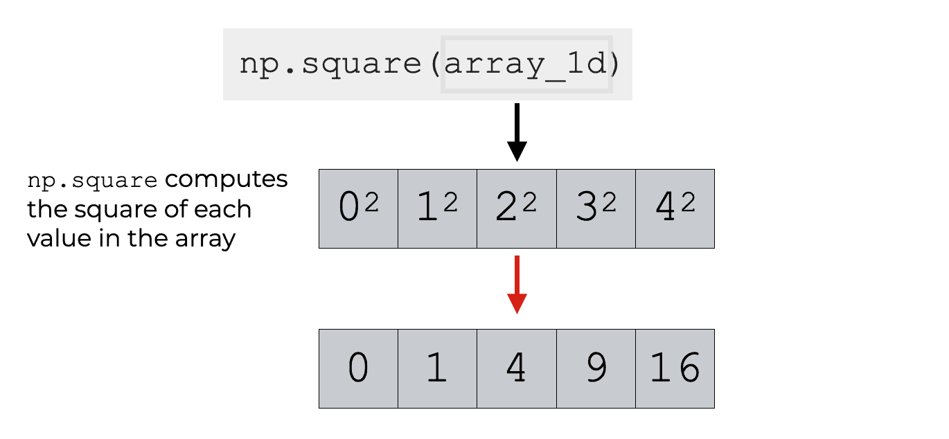An image that shows how Numpy square computes the squares of the values in a 1 dimensional array.