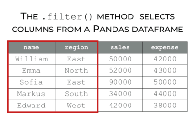 How to use the Pandas filter method